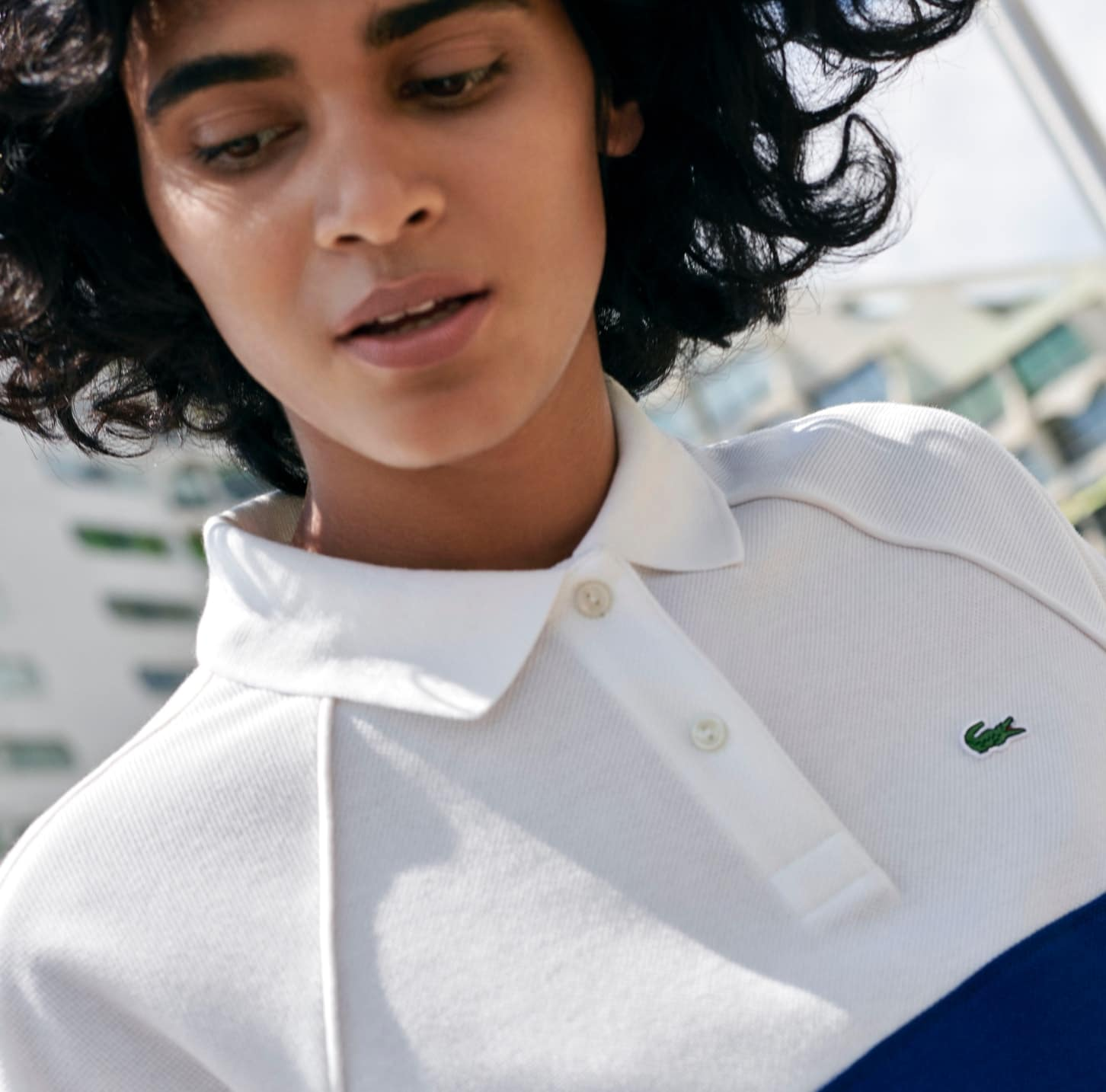 e50ac81d Lacoste T Shirts Price In Uae - DREAMWORKS
