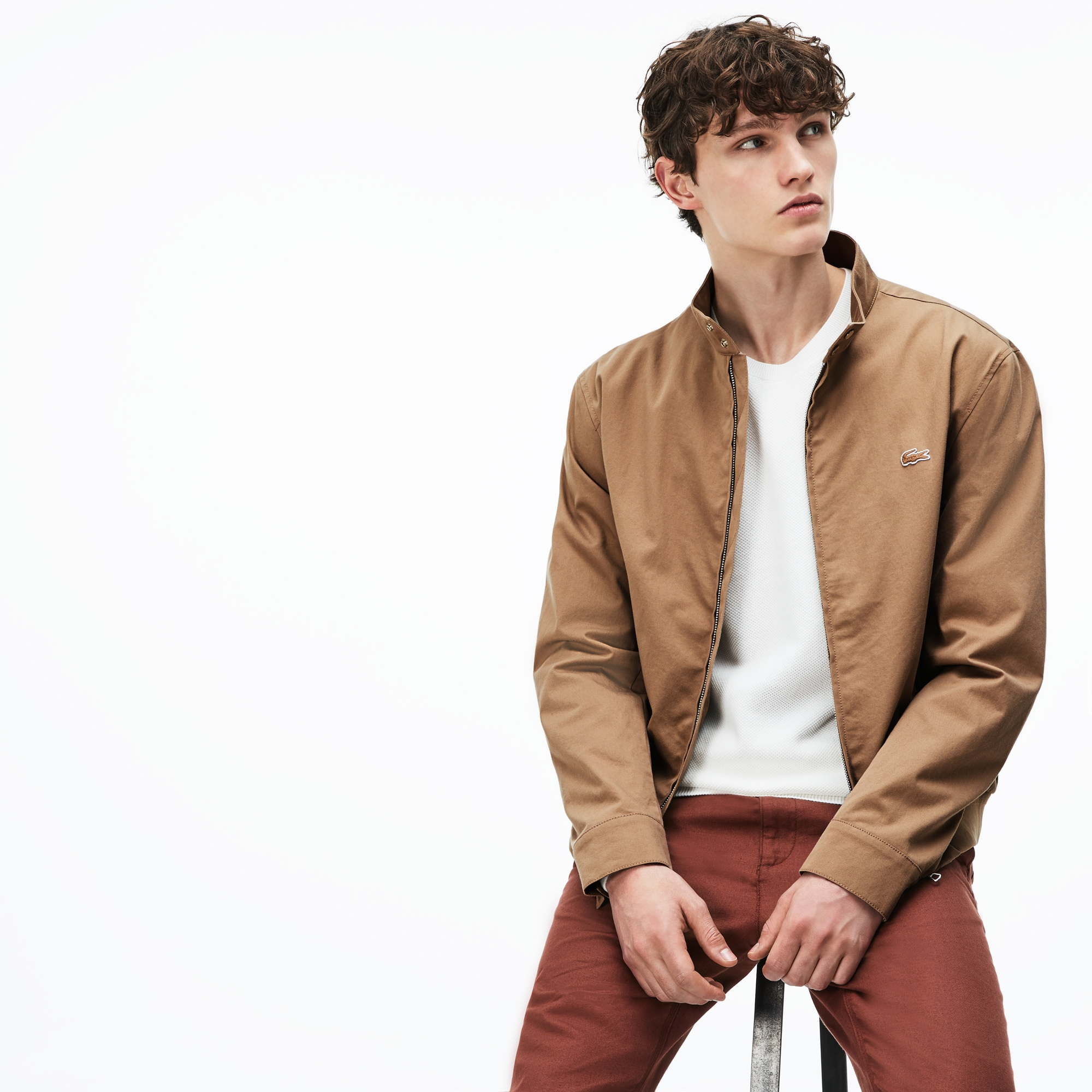 Herren-Kurzjacke aus Baumwoll-Twill mit Reißverschluss