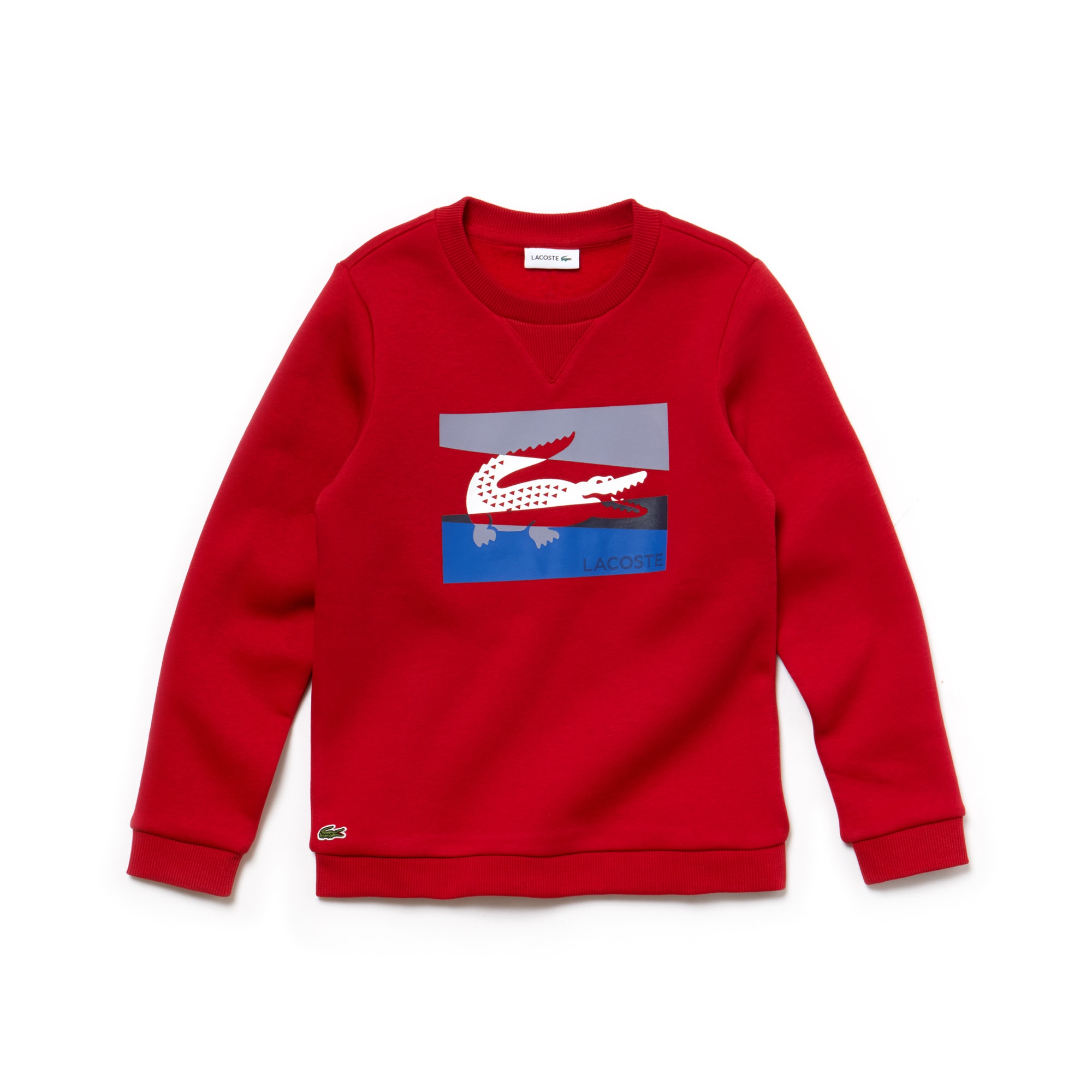 Boys' Crew Neck Colorblock Lettering Fleece Sweatshirt