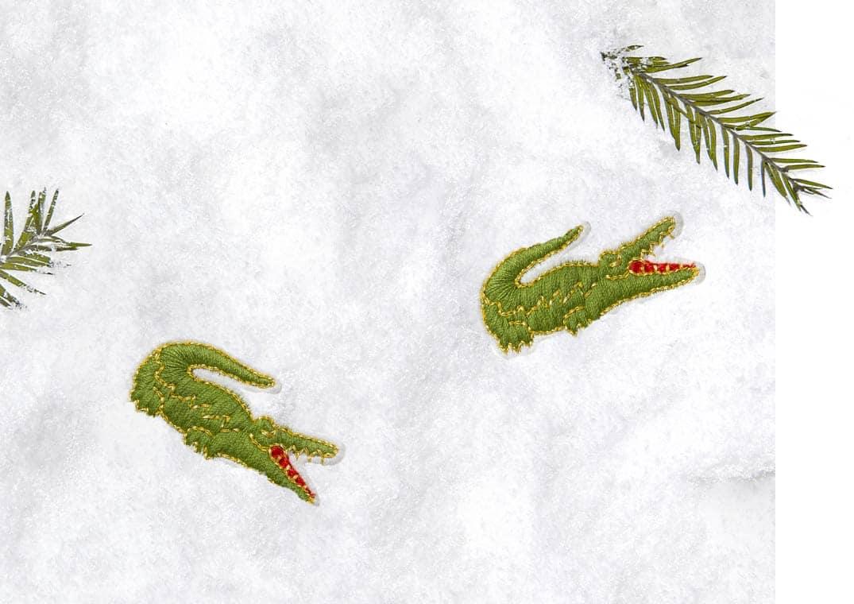 New Crocodiles !